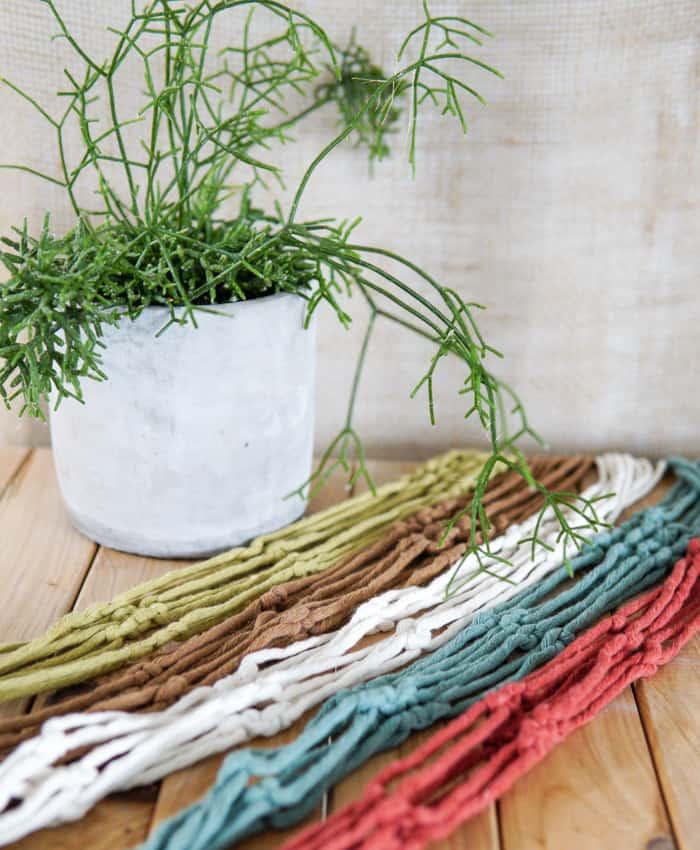 Macrame Plant Hangers, Rope Colours, Plant Hangers, Pulp Kaktus