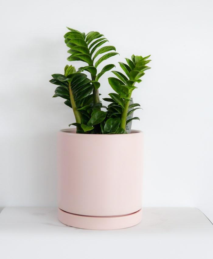 Ceramic Pot, Floor Planter, Pale Pink
